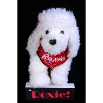 Poodle - White Puppy