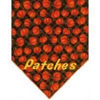 Pumpkin Patch ll