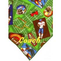 Collegiate Football