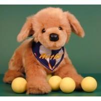 Golden Retriever Pup (D)