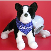 Boston Terrier - Large