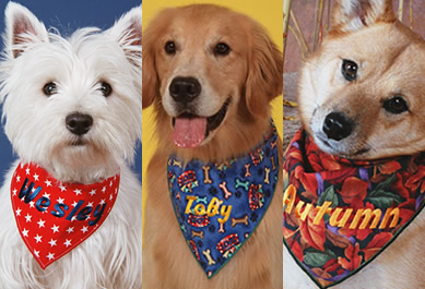 K9design Personalized Gifts For Dogs And The People They Love